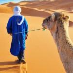 sahara-desert-blue-man-leading-camel-in-dunes-full-size-w642h350
